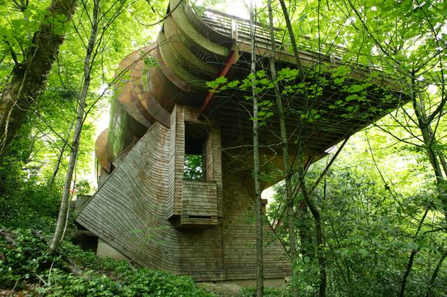 Boingboing_treehouse