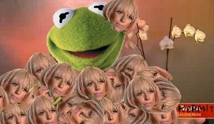 Kermitwearingladygaga