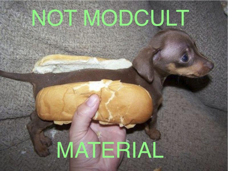 Hot_dog_not_modcult