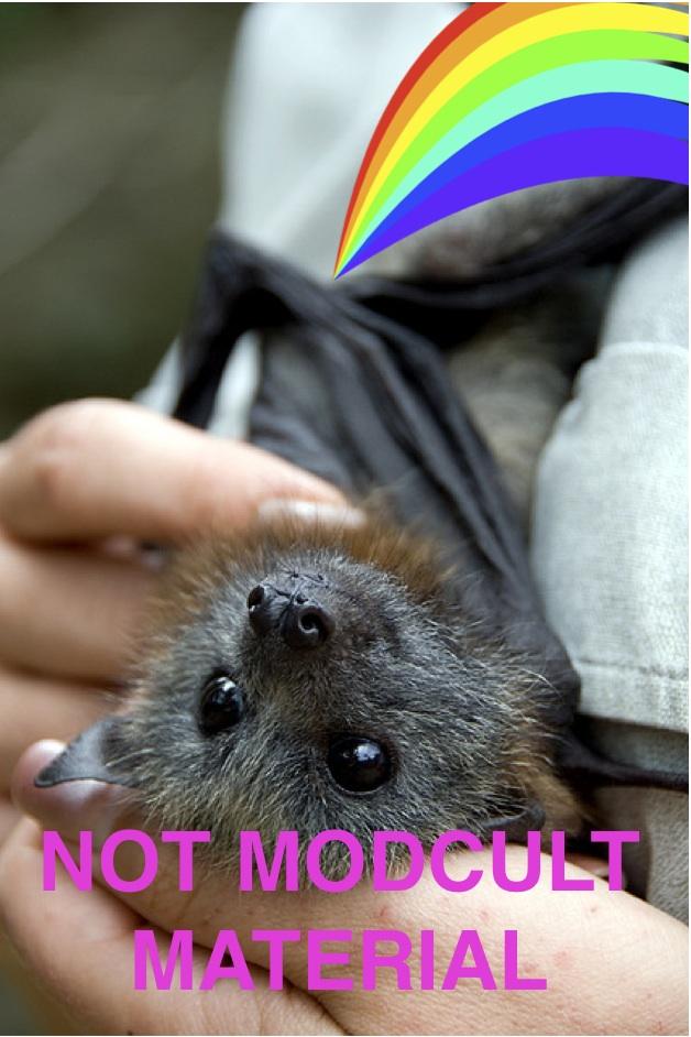 Nyan_bat